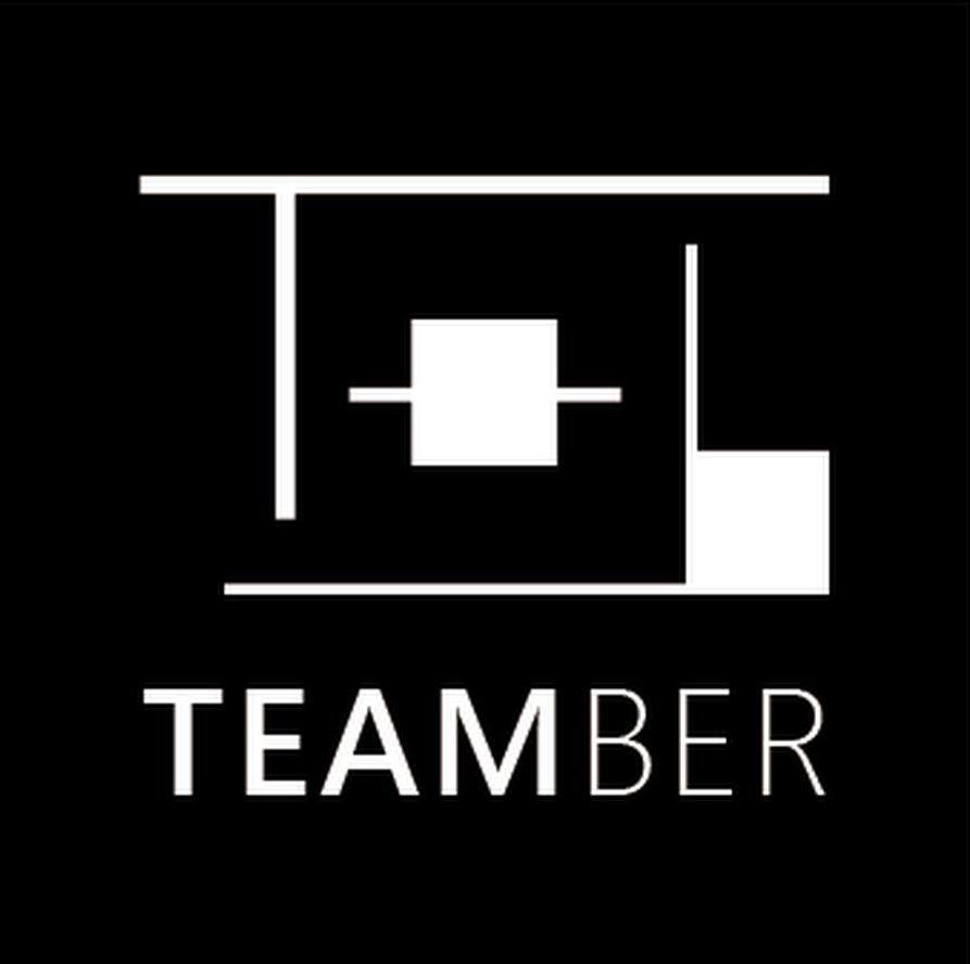 logo-teamber